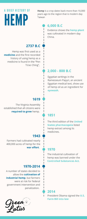 History of Hemp Topicals