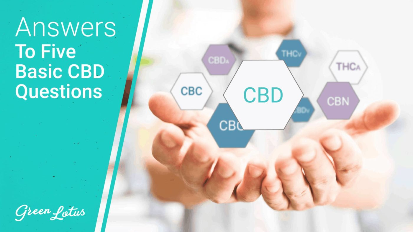 Answers to Your 5 Basic CBD Questions